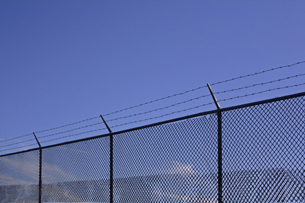 Image Result For Orlando Fence Outlet