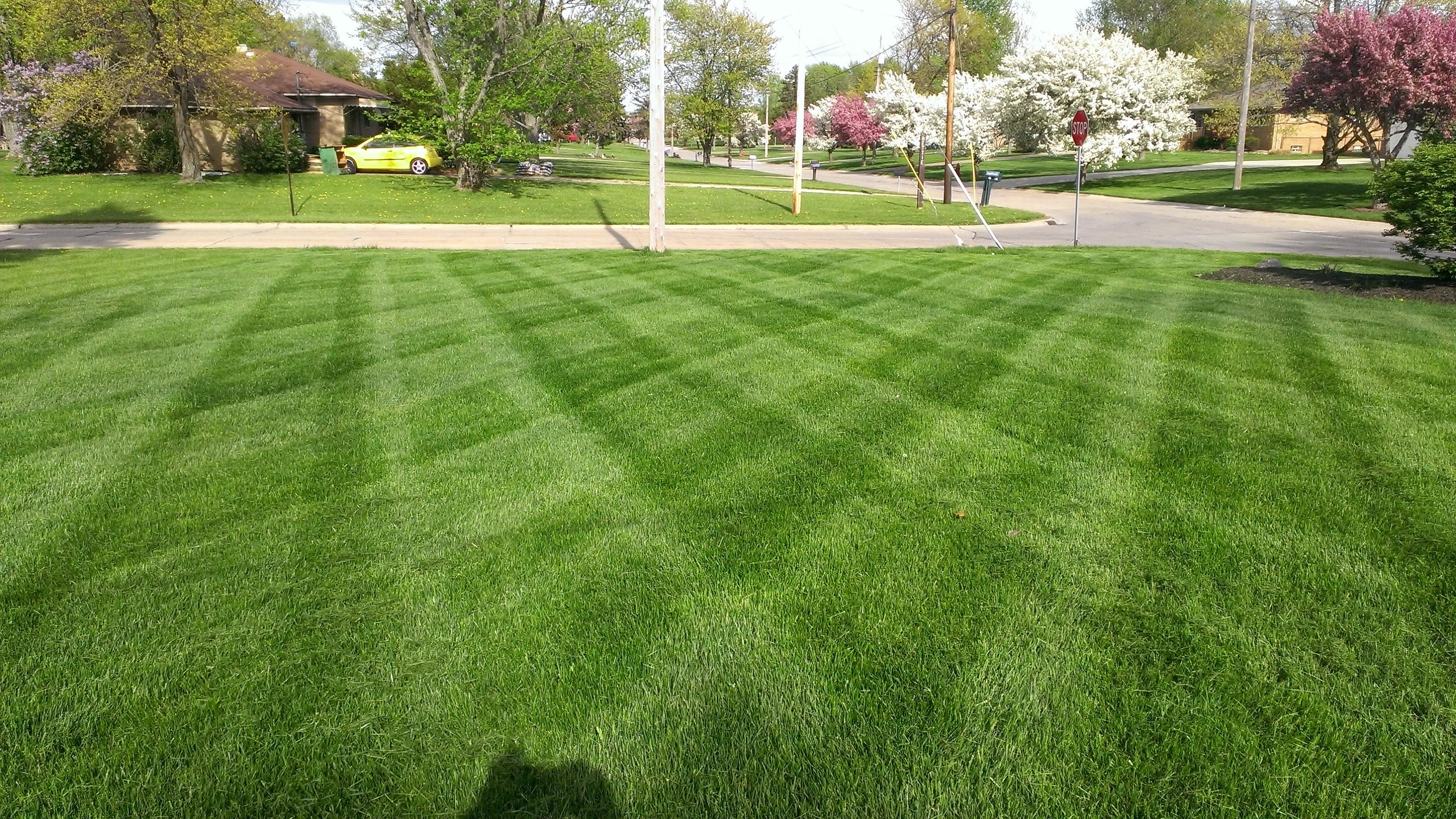 D Amp D Maintenance Lawn Care Images Proview