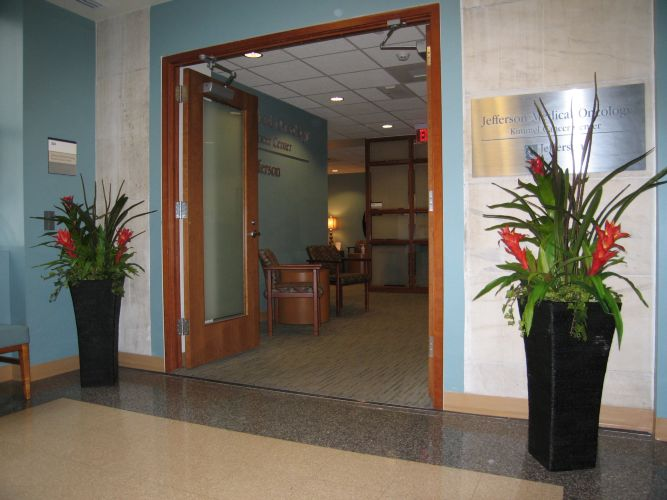 jefferson hospital interior entrance design phila pa by in