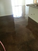 Curtis Street Lofts Stain - Metro Concrete Creations LLC