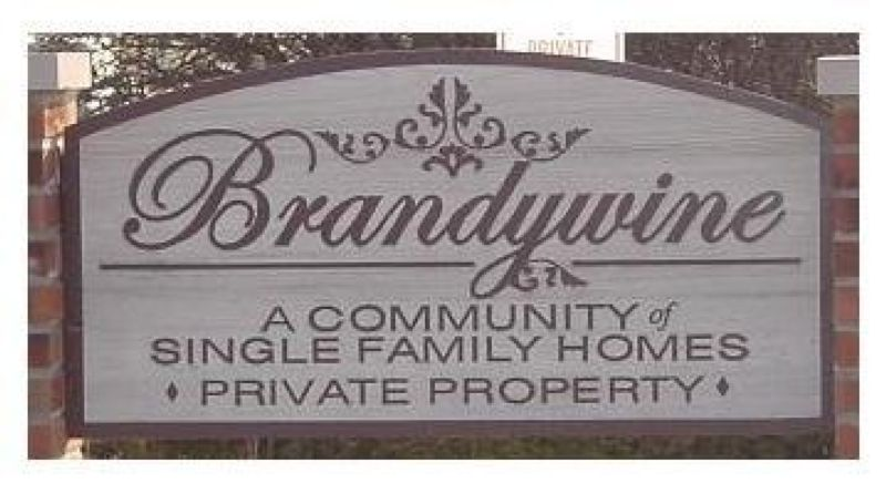 Brandywine Housing Security