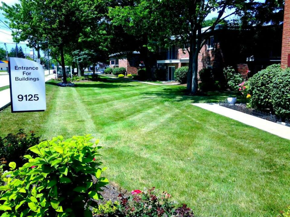 Landscape Edging Pittsburgh : Sharp edge tree landscape image gallery proview
