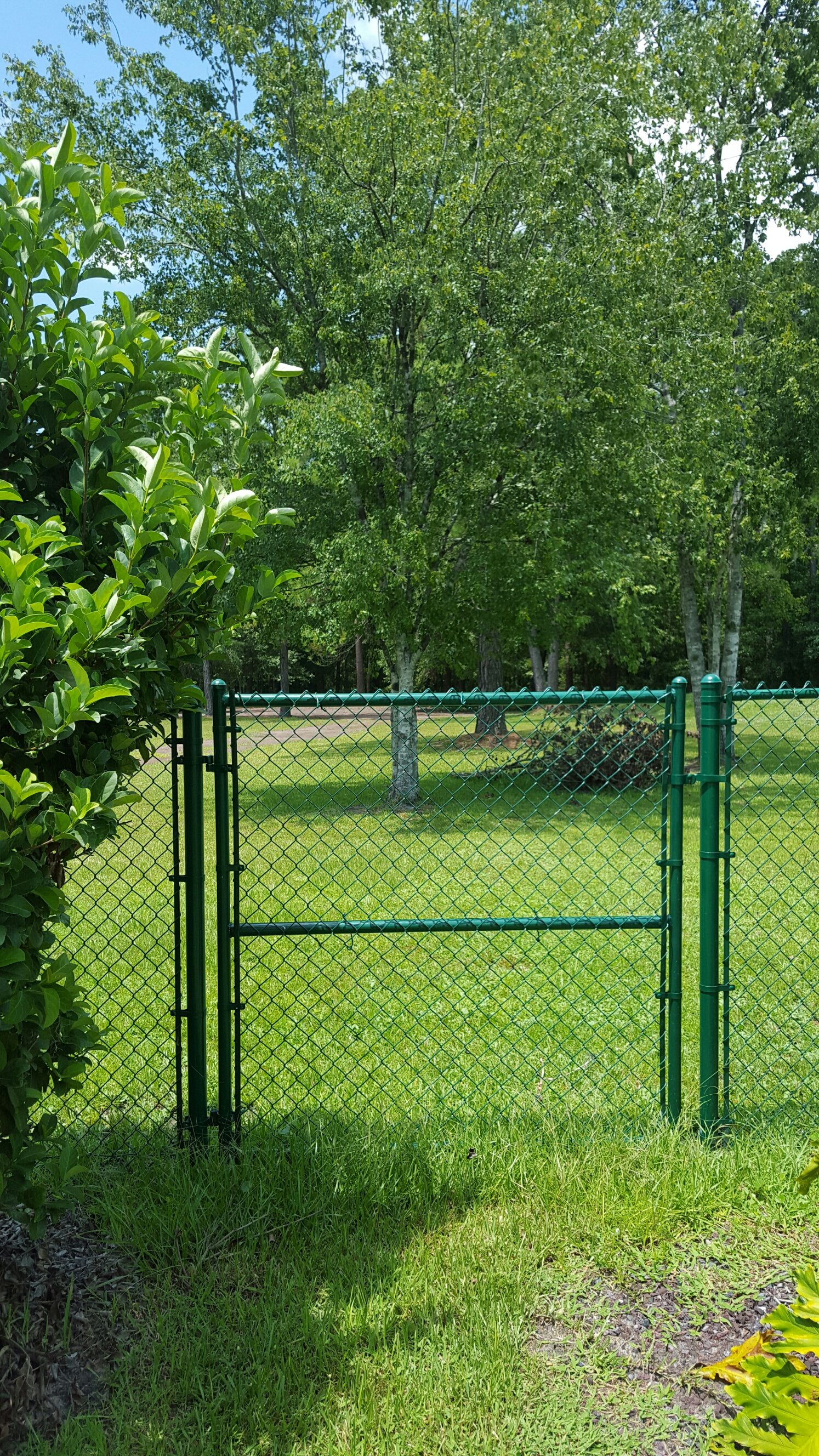 All Out Fence Inc Green Vinyl Image Proview