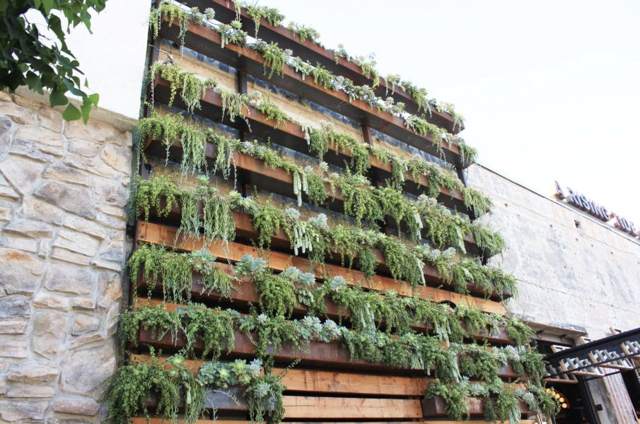 ... Living Walls   Ironside   TrueVert   Vertical Garden Solutions ...