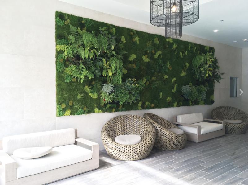 Stunning 15u0027 X 7u0027   Living Wall   TrueVert   Vertical Garden Solutions ...