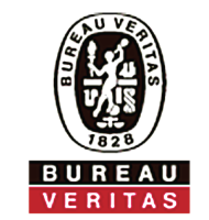 bureau veritas north america fire security systems
