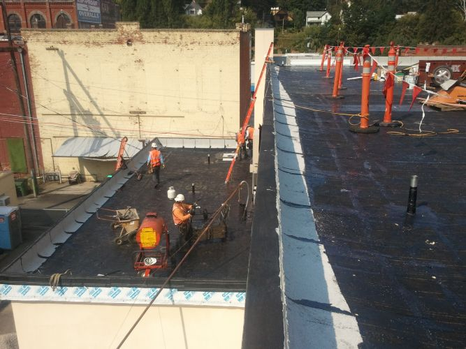 N W Professional Roofing Services Inc Bothell