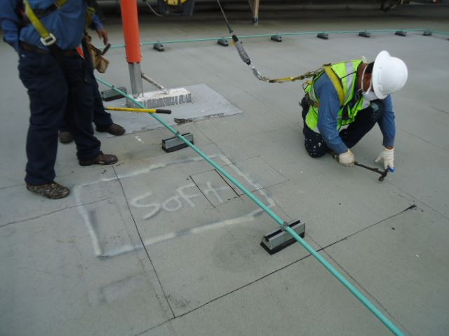 PERSONAL PROTECTIVE GEAR; SAFETY HARNESS/GLASSES, HARD HAT... - ROYAL ROOFING & SOLAR