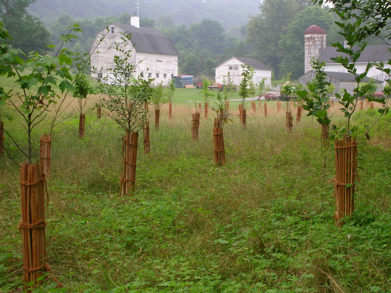 Ecodepot Llc Finksburg Maryland Proview