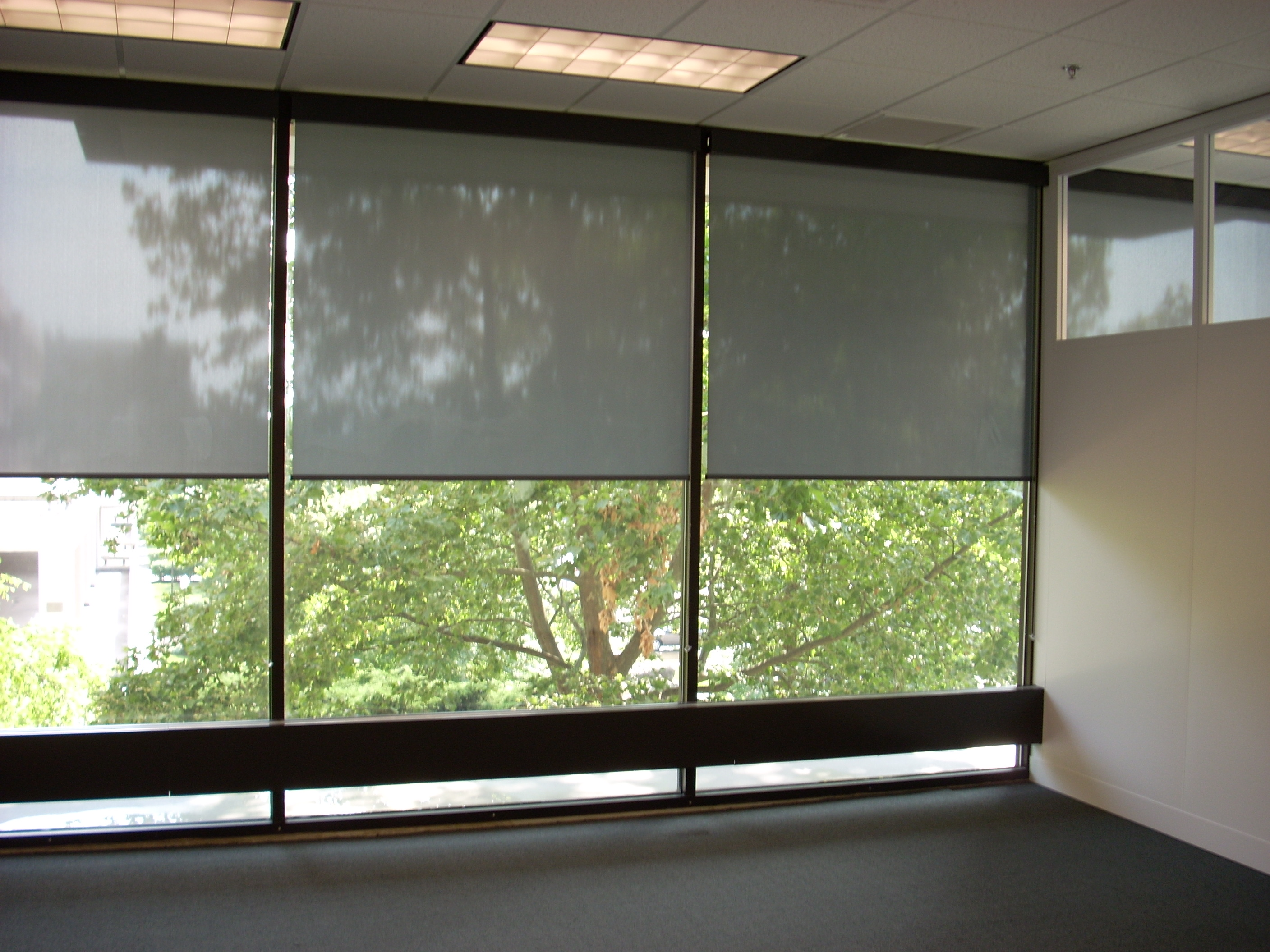 sale custom bend drapery valances budget coverings and blinds clean window for at myhomedesign in win or oregon classic