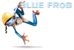 Blue Frog Construction ProView