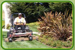 Landscape Maintenance  - Valley Landscaping Inc.
