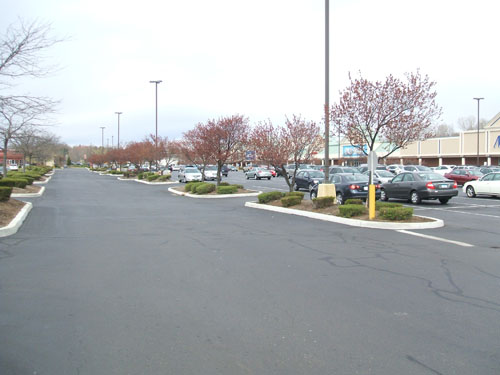 New Curbing for Islands on Existing Asphalt - Concrete Curb Crafters