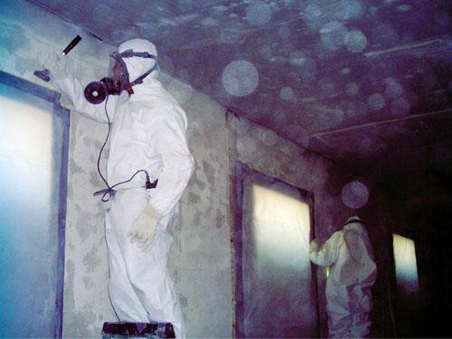 Asbestos Abatement - Dec-Tam Corporation