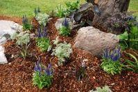 Landscape Design 2 - Omega Landscape Design