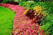 Landscape Design 3 - Omega Landscape Design