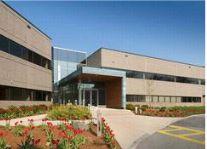 Office Building Landscape Design 2 - Omega Landscape Design
