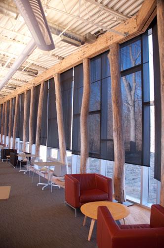 Ann Arbor Public Library, Traverwood Branch - Creative Windows