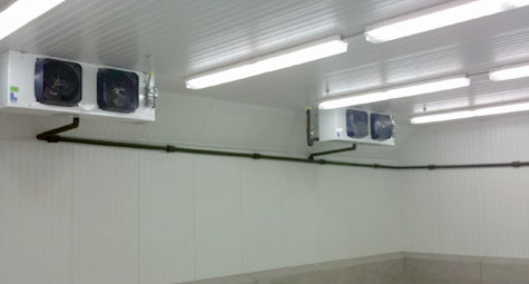Inside Box with Curbs - Cold Storage Group, Inc.