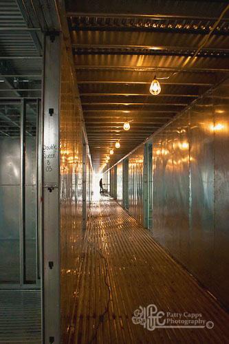 Swinomish Corridor - Metier Construction, Inc.
