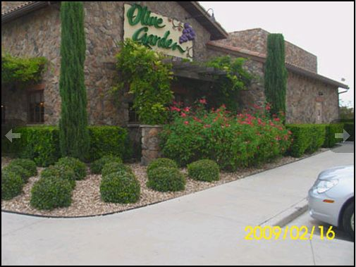 Maldonado Landscape Irrigation Ltd Video Image Gallery Proview