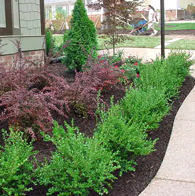 Commercial Landscape Design, Installation & Irrigation