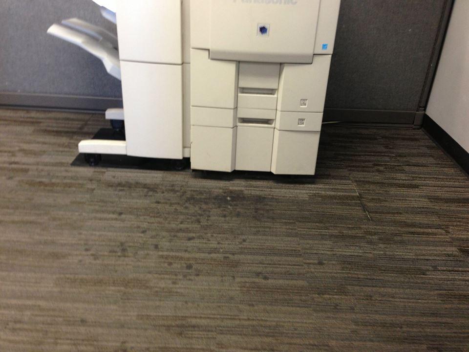 Joski Carpet Cleaning Ideas